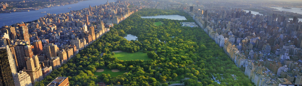 central-park-wide