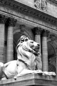 Stone lion in front of New York Public Library main branch building