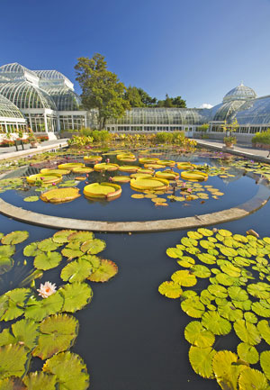 Free Admission to New York Botanical Garden