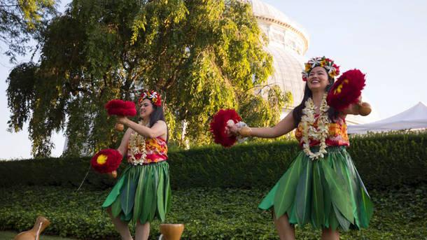 6 discount on aloha nights at new york botanical garden - New york botanical garden promo code ...